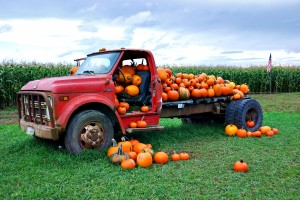 pumpkintruck
